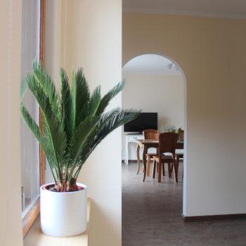1 a Entrance hall
